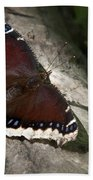 Mourning Cloak Butterfly Bath Towel