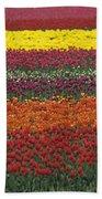 Mult-colored Tulip Field Bath Towel