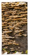 Mushroom Log Bath Towel