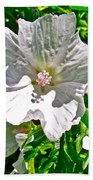 Musk Mallow Along Trail To Cap Gaspe In Forillon National Park-quebec  Bath Towel