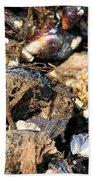 Mussels Bath Towel