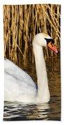 Mute Swan By Reed Beds Bath Towel