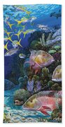 Mutton Reef Re002 Bath Towel