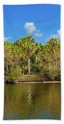 Myakka River From Jelks Preserve Hand Towel