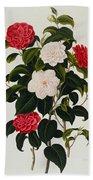 Myrtle Leaved Camellia Hand Towel