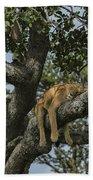 Nap Time On The Serengeti Bath Towel