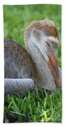 Napping Sandhill Baby Bath Towel