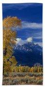 Narrowleaf Cottonwoods Fall Color Teton Bath Towel