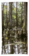 Natchez Trace Wetlands Hand Towel