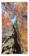 Nature In Art Bath Towel