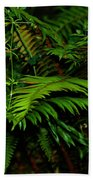 Nature In The Pacific Nw Hand Towel