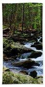 Nature Walk Bath Towel