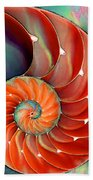 Nautilus Shell - Nature's Perfection Bath Towel