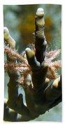 Neck Crab - Macro Undersea Reef Life Bath Towel