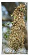 Nest Of Altamira Oriole Icterus Gularis Bath Towel