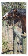 New Horse In The Herd Bath Towel