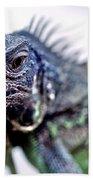 Close Up Beady Eyed Iguana Bath Towel