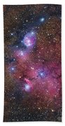 Ngc 6559 Emission And Reflection Bath Towel