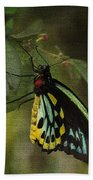 Northern Butterfly Bath Towel