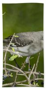 Northern Mockingbird Bath Towel