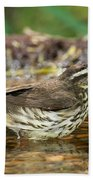 Northern Waterthrush Bath Towel