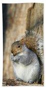 Nuts Bath Towel