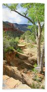 Over Slide Rock Bath Towel