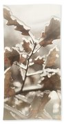 Oak Tree Leaves Frozen In Ice Bath Towel