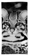 Ocelot In Repose Bath Towel
