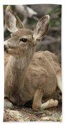 Oh Deer Bath Towel