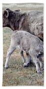 Oil Paint Look Cow And Calf Portrait Usa Bath Towel