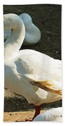 Oil Painting - A Duck Making A Pose Bath Towel