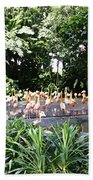 Oil Painting - A Number Of Flamingos Surrounded By Greenery In Their Enclosure  Bath Towel