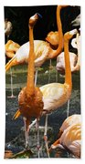 Oil Painting - A Number Of Flamingos With Their Heads Held High Inside The Jurong Bird Park Bath Towel