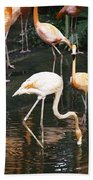 Oil Painting - The Head Of A Flamingo Under Water In The Jurong Bird Park In Singapore Bath Towel