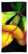 Yellow And Orange Trefoil  Bath Towel