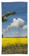 Oilseed Rape Field Against Blue Sky Bath Towel