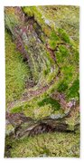 Old Decaying Lichens Moss Covered Taiga Tree Trunk Bath Towel