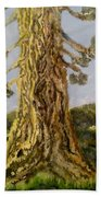 Old Tree In Spring Light Bath Towel