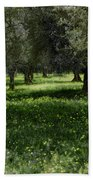 Olive Grove Color Italy Bath Towel