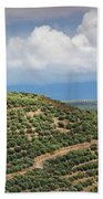 Olive Trees In A Field, Ubeda, Jaen Bath Towel