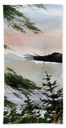 Olympic Coast Eagle Bath Towel