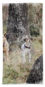 On Guard - Featured In Comfortable Art Group Bath Towel