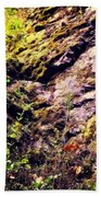 On The Side Of The Rock Bath Towel