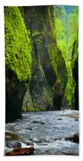 Oneonta River Gorge Hand Towel