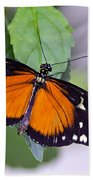 Orange And Black Butterfly Bath Towel