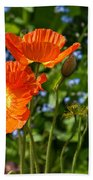 Orange And Blue - Beautiful Spring Orange Poppy Flowers In Bloom. Bath Towel