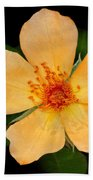 Orange Blossom Bath Towel