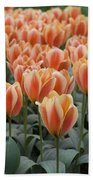 Orange Dutch Tulips Hand Towel
