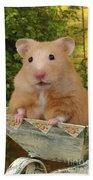 Orange Hamster Ha106 Bath Towel